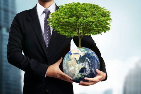 Профессиональная переподготовка по экологии